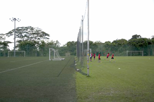 SAS currently has both grass and turf fields. Photo by Chris Khoo.