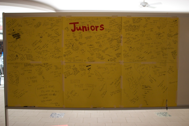Junior board