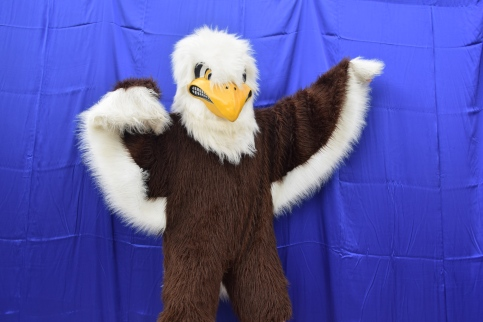 Eagle pride! Photo by Rosie Hogan