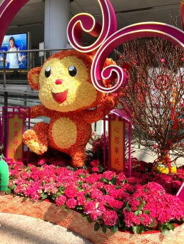 CNY Decorations at Hong Kong International Airport. Flowers shaped into a monkey for the Year of the Monkey.