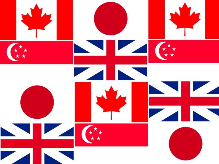 multi-flag