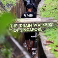 The Mysterious Drain Walkers of Singapore